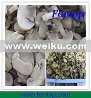Quality Agriculture Canned Mushroom for sale