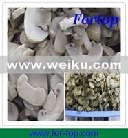 Buy Agriculture Canned Mushroom at wholesale prices