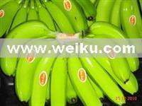 Quality Agriculture Green Cavendish banana for sale
