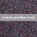 Quality Agriculture Mustard Seeds / Rape Seeds / Black mustard / Brown mustard for sale