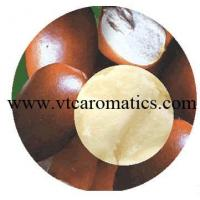 Quality Shea Butter Oil for sale