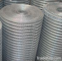 Quality Welded Wire Mesh DBL-A for sale