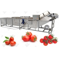 Quality Industrial Tomato Washing Machine Hot Sale for sale