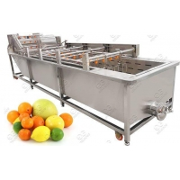 Quality Commercial Use Fruit Washing Machine Citrus Cleaning Machine for sale