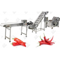 Quality Automatic Chili Pepper Washing Drying Machine Line for sale