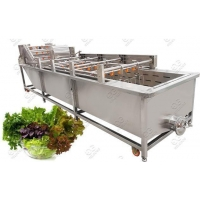 Quality Automatic Leafy Vegetable Washing Machine for sale