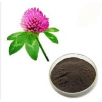 Quality Standard Plant Extract Contact Now Red Clover Extract Powder for sale