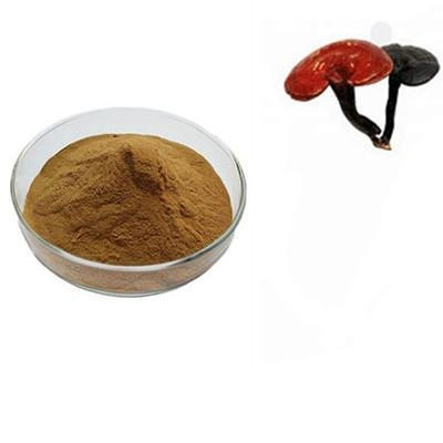 Buy Standard Plant Extract Reishi Mushroom P.E at wholesale prices