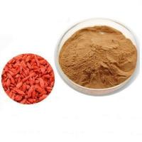 Quality Standard Plant Extract Wolfberry/Goji Berry Extract Powder for sale