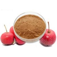 Quality Hawthorn Fruit Extract for sale