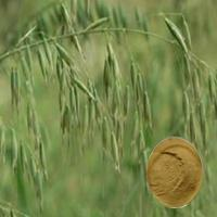 Quality Oat Extract for sale