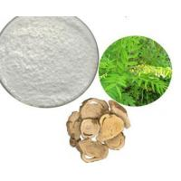 Quality Sophora Flavescens Extract for sale