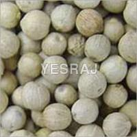 Quality White Pepper Seeds for sale