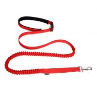 Quality Reflective Bungee Hands Free Dog Running Leash with Waist for sale