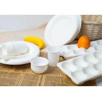 Disposable Examples-tablewares