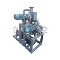 Quality ZJ300-ZJ150-2SK6 Roots Water-ring Vacuum Units for sale