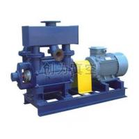 Quality 2BE1_202 Water-ring Pump for sale