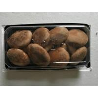 Quality Letinous edodes in small package for sale
