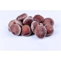 Quality Letinous edodes for sale