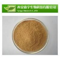 Quality Standard Herb Extract Passion flower E.P for sale