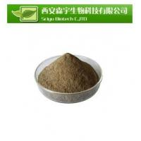 Quality Standard Herb Extract Pomegranate P.E for sale